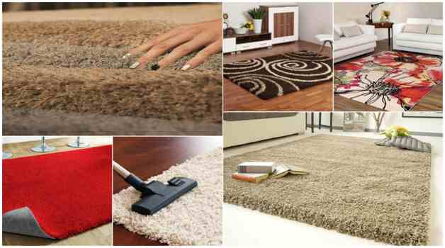 How to get rid carpet beetels