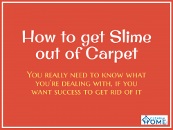 How to get Slime out of Carpet although it is a Cool Toy
