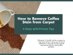 How to Remove Coffee Stains from Carpet – 4 Steps with Proven Tips