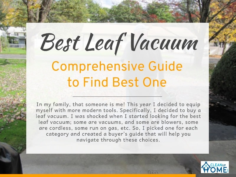 Best-Leaf-Vacuum-review