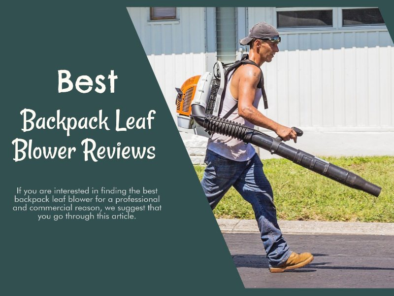Best Backpack leaf blower reviews