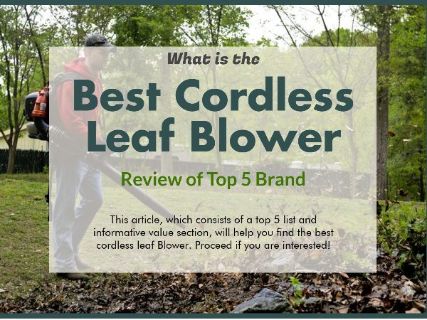 Best Cordless Leaf Blower (what is the best Leaf Blower and How to choose)