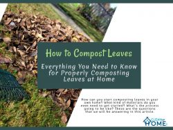 Everything You Need to Know for Properly Composting Leaves at Home
