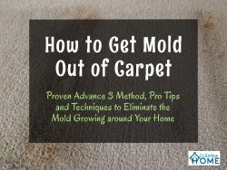 Eliminate the Mold from Carpet – Proven Advance 3 Method, Pro Tips and Techniques